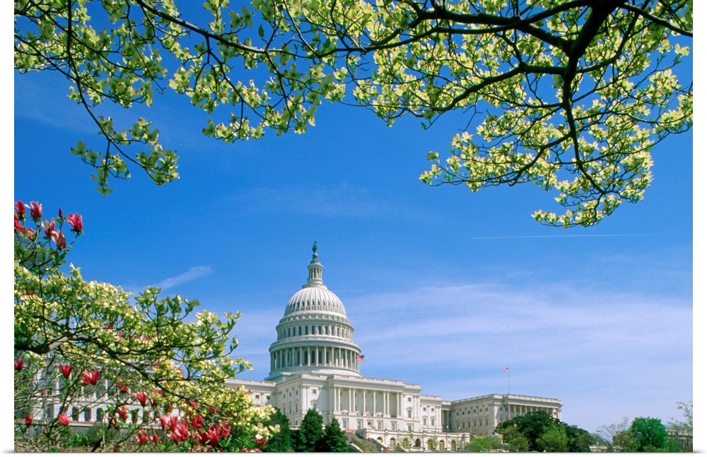 Poster Print Wall Art entitled Capitol Building Washington, DC, USA