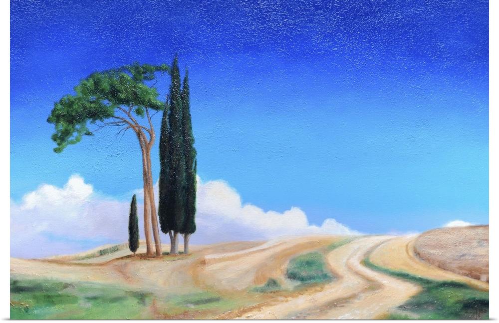 Poster Print Wall Art entitled 4 Trees, Picenza, Tuscany, 2002