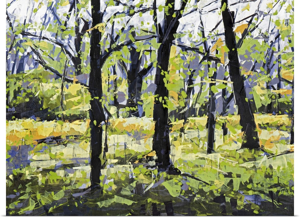 Poster Print Wall Art entitled Spring Forest