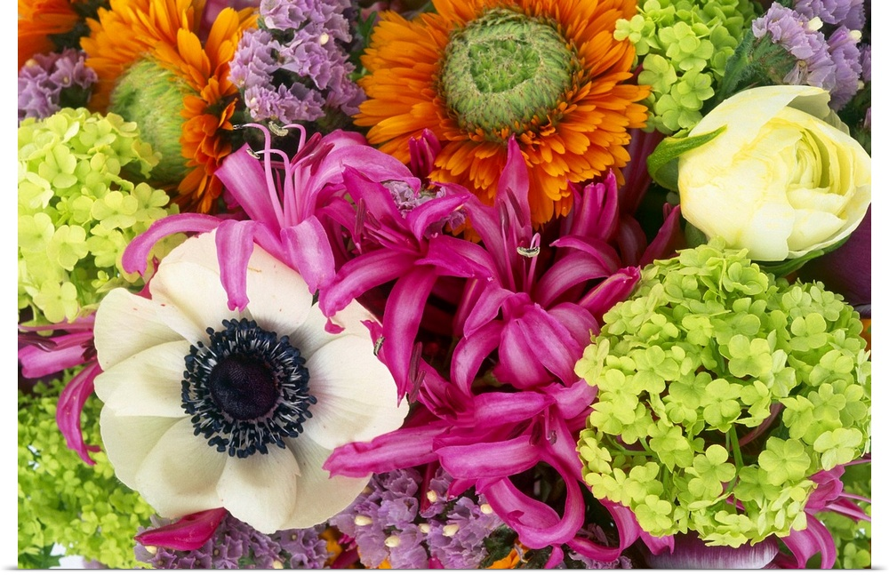 Poster Print Wall Art entitled Close up of colourful cut flowers