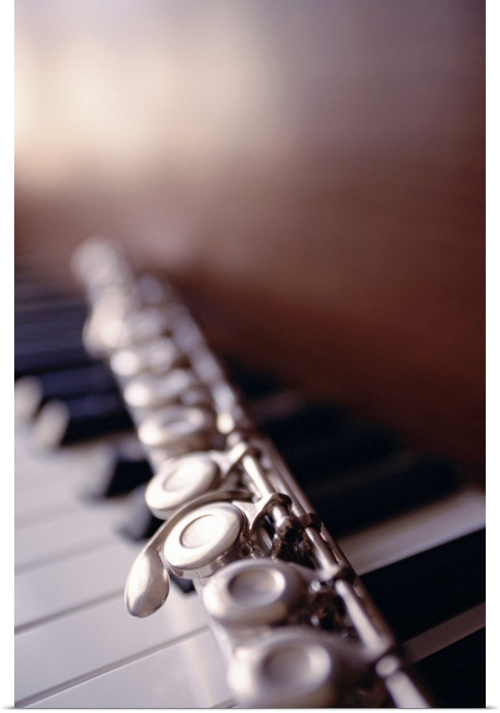 Poster Print Wall Art entitled Close-up of flute on piano keys