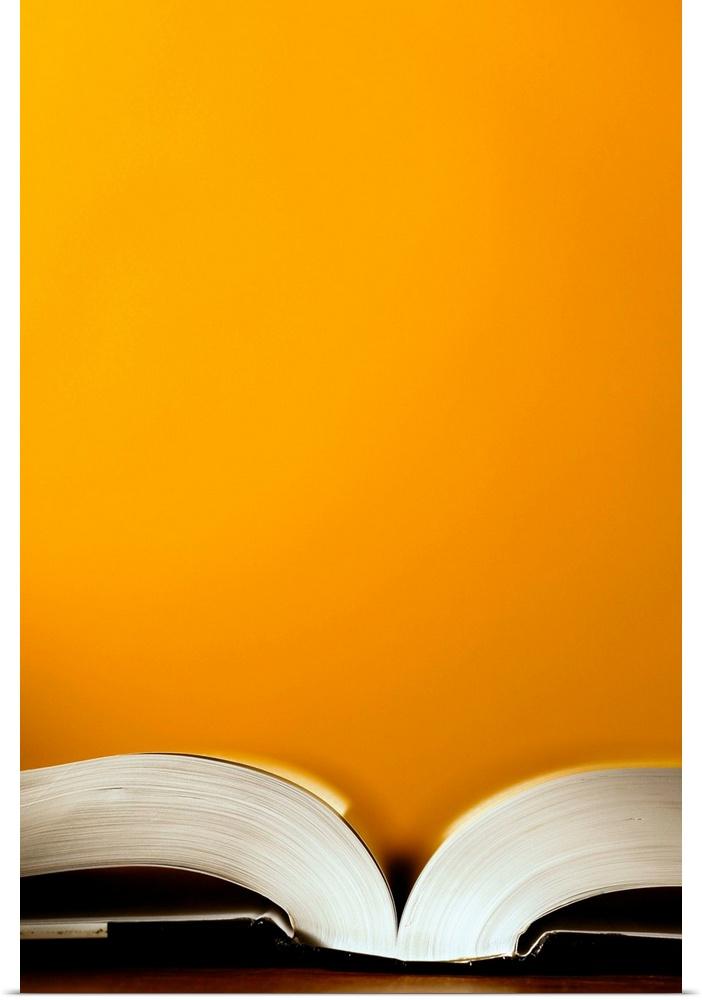 Poster Print Wall Art entitled Open book