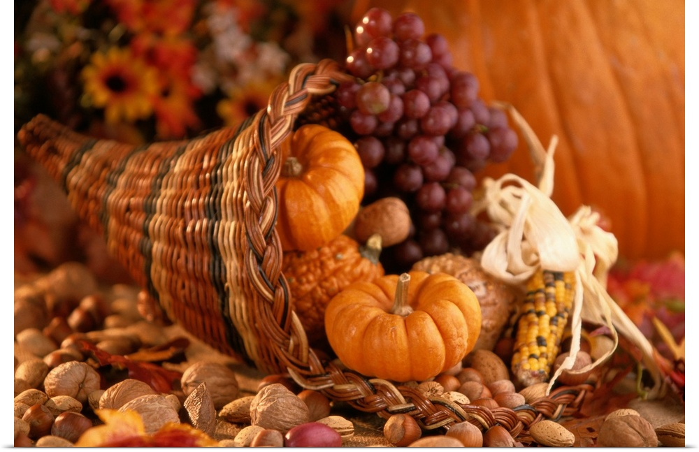 Poster Print Wall Art entitled Still Life of Thanksgiving Harvest