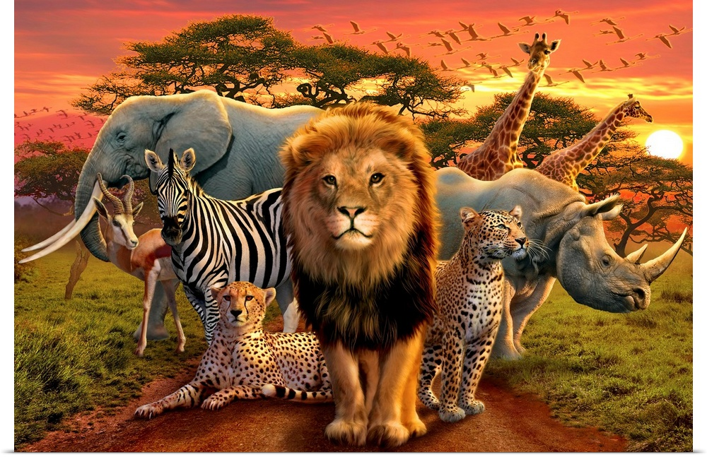 Poster Print Wall Art entitled African Beasts