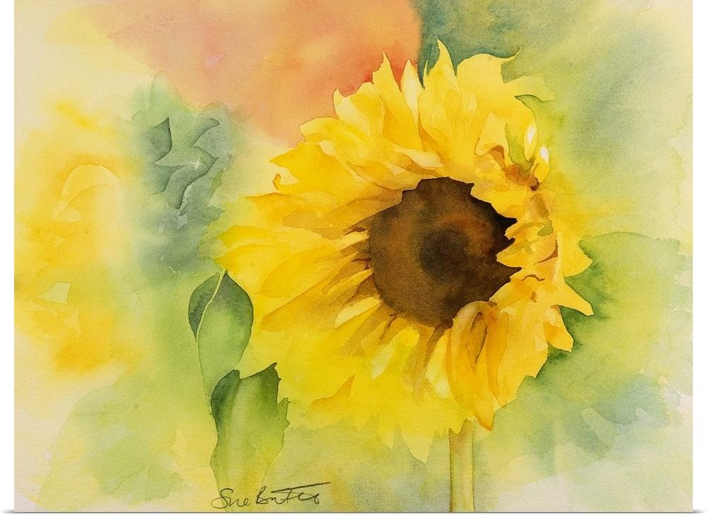 Poster Print Wall Art entitled Gentle Sunflower