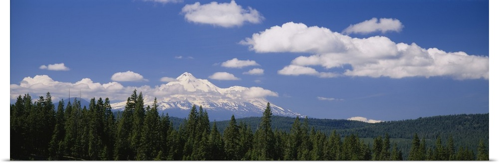 Poster Print Wall Art entitled Clouds over mountains, Mt Shasta, California