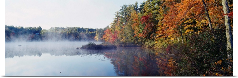 Poster Print Wall Art entitled New Hampshire, bianca Mountains National Forest,