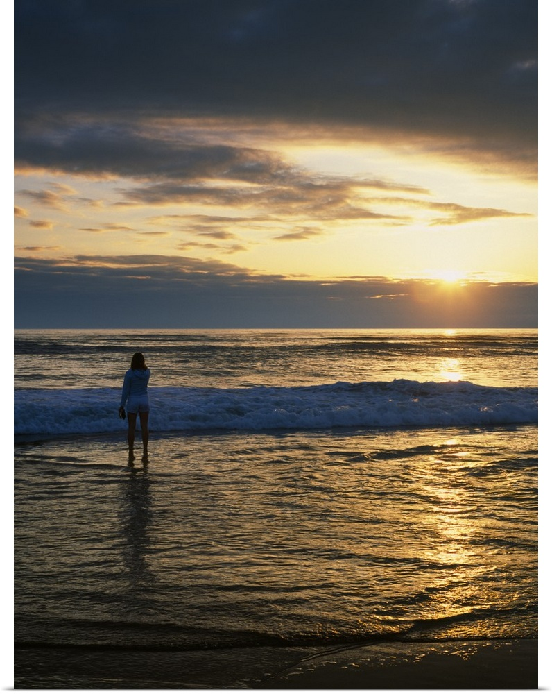 Poster Print Wall Art entitled Rear View Of Woman On Beach Looking Toward