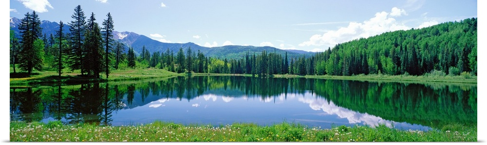 Poster Print Wall Art entitled Scenic CO