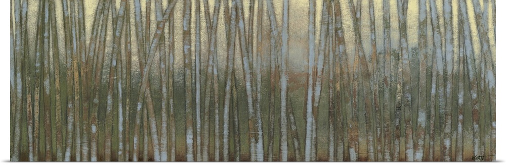 Poster Print Wall Art entitled blu Birch Forest I