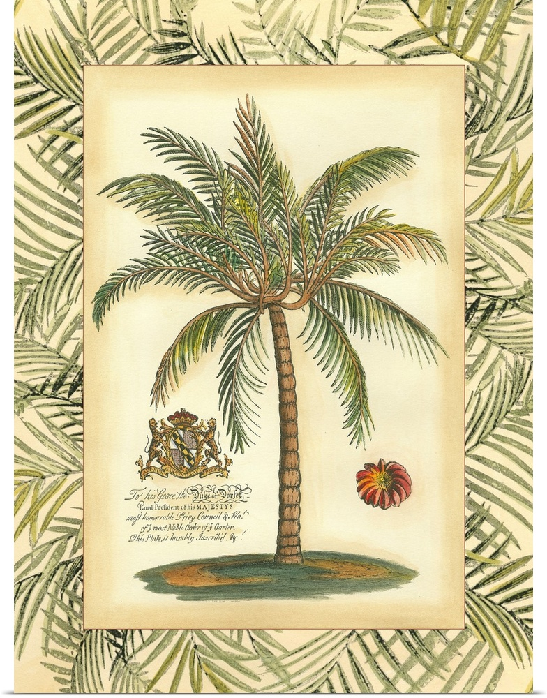 Poster Print Wall Art entitled Palm in Bamboo II