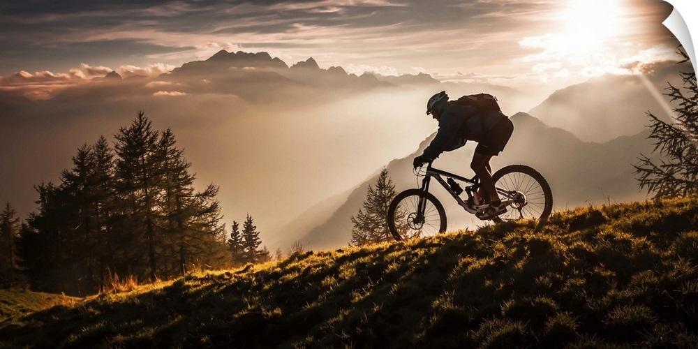 Wall Decal entitled Golden hour biking