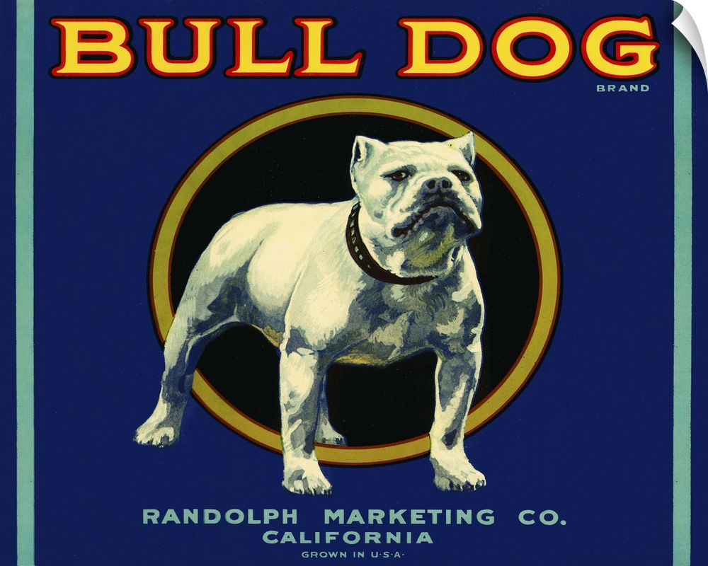 Wall Decal entitled Bull Dog Brand