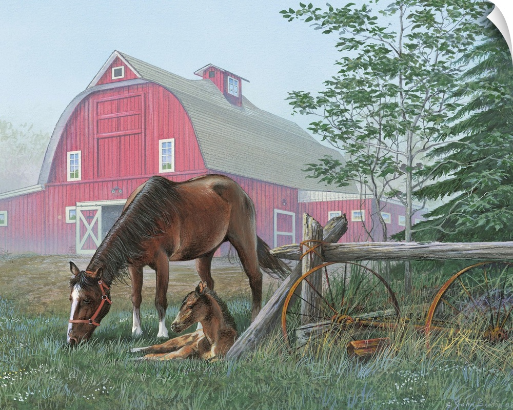 Wall Decal entitled Quiet morning - horse and foal