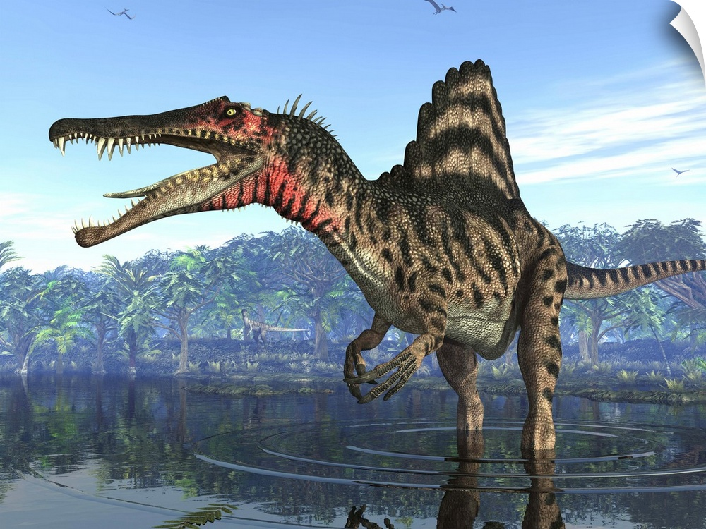 wand abziehbild entitled A Spinosaurus searches for its next meal