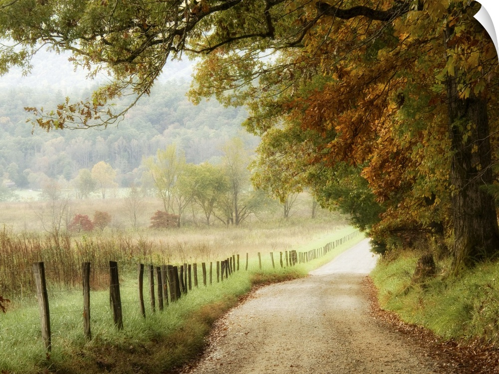 Wall Decal entitled Autumn on a Country Road