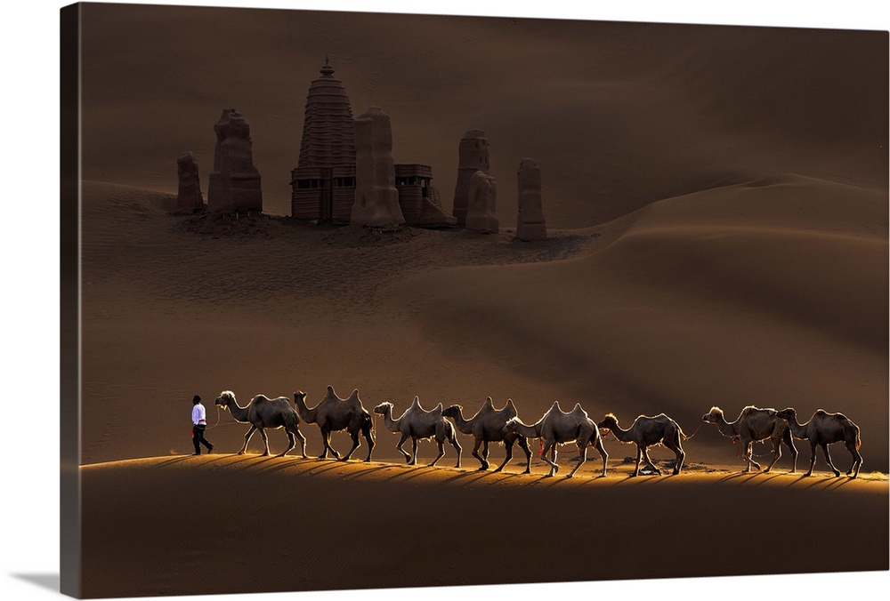 Canvas Kunst Drucken  Castle And Camels