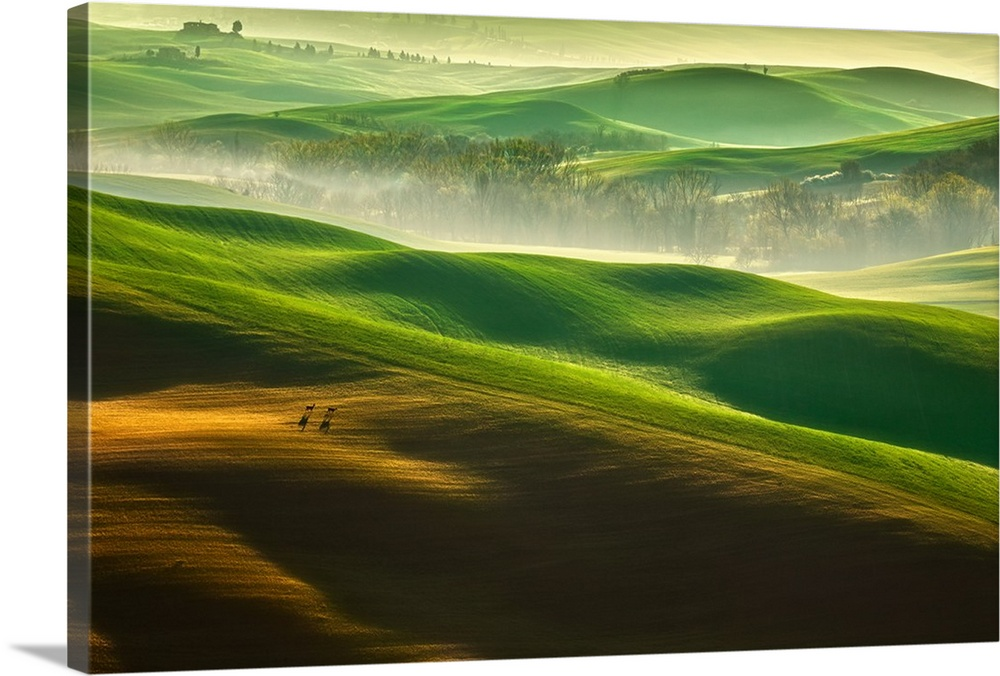 Large Solid-Faced Canvas Print Wall Art Print 36 x 24 entitled Freedom Solid-Faced Canvas Print entitled Freedom.  Light mist over the verdant rolling hills of Tuscany, Val dOrcia, Italy.  Multiple sizes available.  Primary colors within this image include Orange, Forest Green, Dark Gray, White.  Made in USA.  All products come with a 365 day workmanship guarantee.  Inks used are latex-based and designed to last.  Canvas is handcrafted and made-to-order in the United States using high quality artist-grade canvas.  Archival inks prevent fading and preserve as much fine detail as possible with no over-saturation or color shifting.