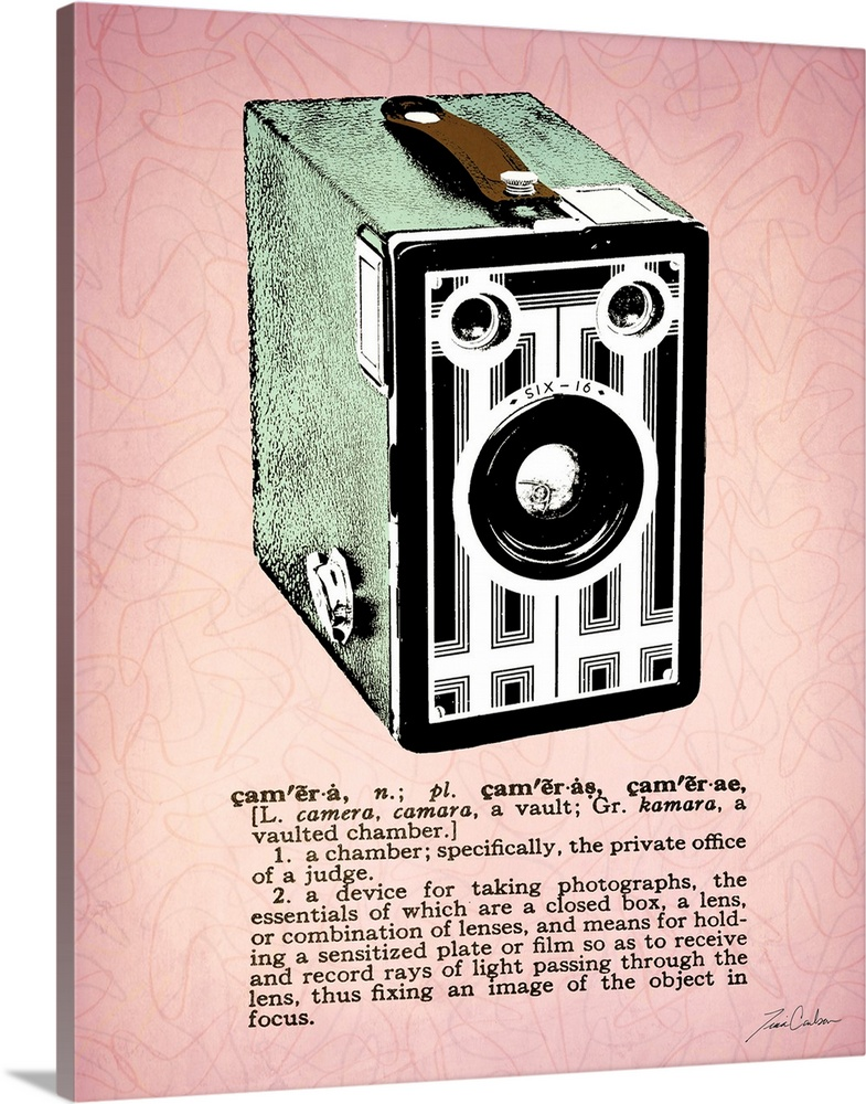 Large Solid-Faced Canvas Print Wall Art Print 24 x 30 entitled Camera Solid-Faced Canvas Print entitled Camera.  Retro-style illustration of a box camera with the dictionary definition below the image.  Multiple sizes available.  Primary colors within this image include Brown, Black, Light Gray, White.  Made in USA.  Satisfaction guaranteed.  Inks used are latex-based and designed to last.  Canvas depth is 1.25 and includes a finished backing with pre-installed hanging hardware.  Archival inks prevent fading and preserve as much fine detail as possible with no over-saturation or color shifting.