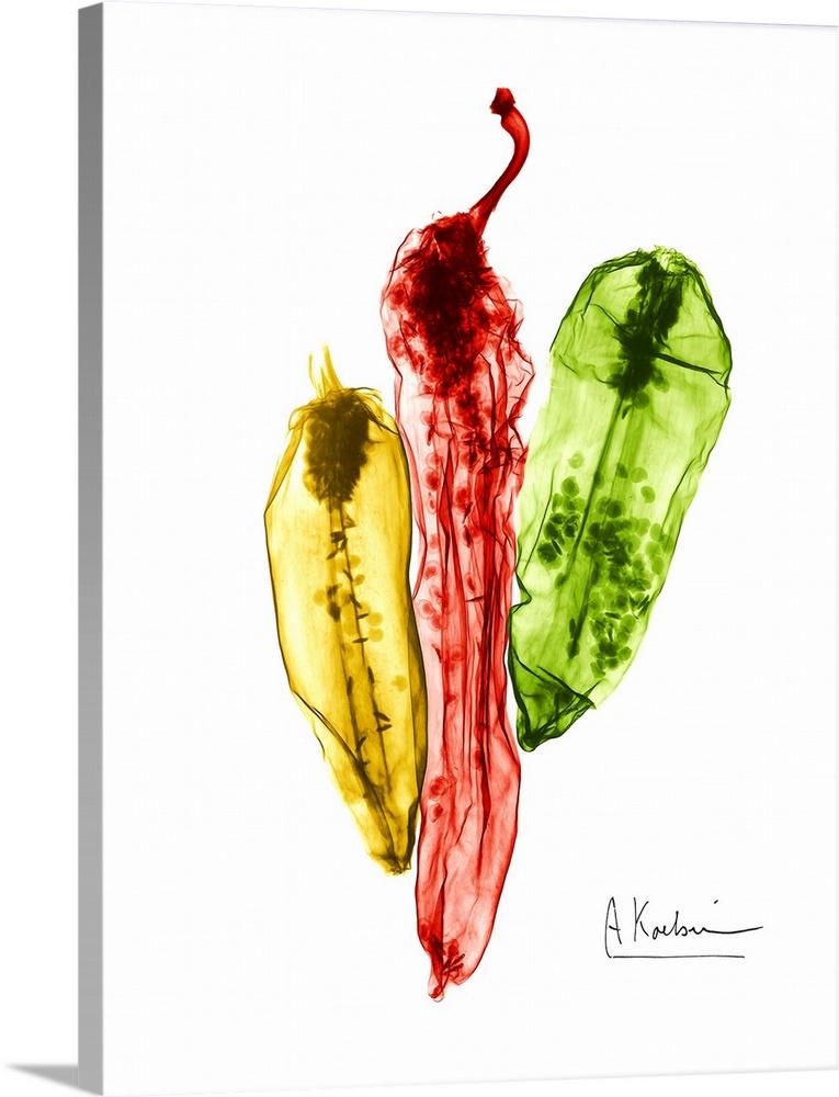 Canvas Kunst Drucken  Peppers Picante