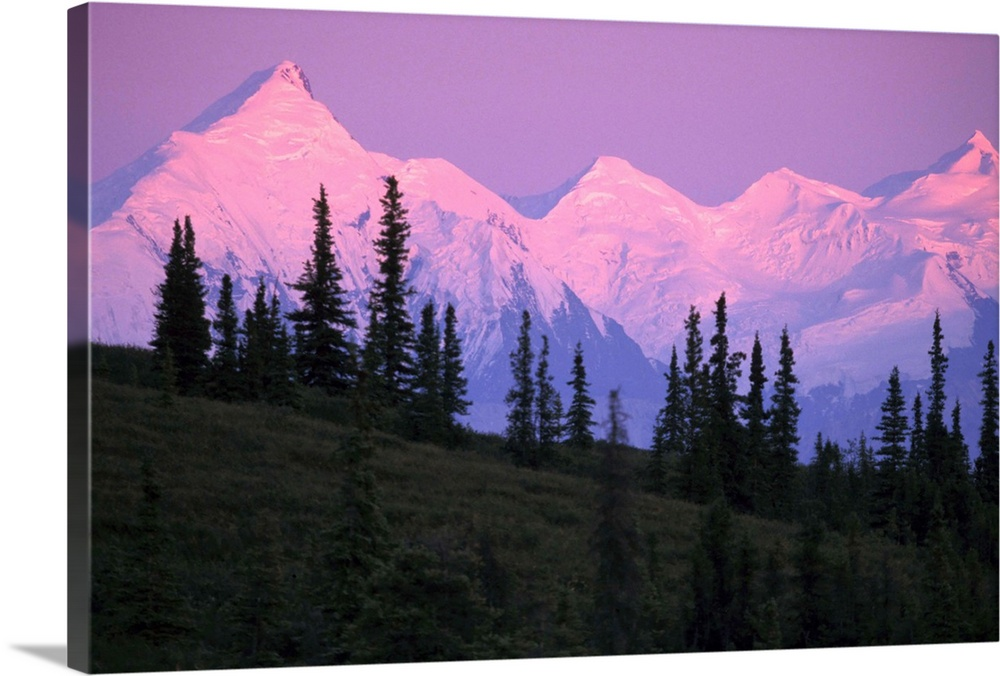 Large Solid-Faced Canvas Print Wall Art Print 30 x 20 entitled Alpenglow on Mt Brooks and AK Range Denali Solid-Faced Canvas Print entitled Alpenglow on Mt Brooks and AK Range Denali.  Multiple sizes available.  Primary colors within this image include Light Purple, Black, Royal Blue.  Made in USA.  All products come with a 365 day workmanship guarantee.  Archival-quality UV-resistant inks.  Archival inks prevent fading and preserve as much fine detail as possible with no over-saturation or color shifting.  Canvas depth is 1.25 and includes a finished backing with pre-installed hanging hardware.