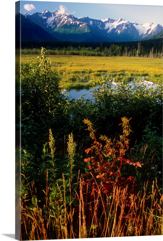 Large Solid-Faced Canvas Print Wall Art Print 20 x 30 entitled Autumn landscape along the Turnagain Arm near Girdwood, Alaska Solid-Faced Canvas Print entitled Autumn landscape along the Turnagain Arm near Girdwood, Alaska.  Multiple sizes available.  Primary colors within this image include Black, White, Muted Blue, Dark Forest Green.  Made in USA.  Satisfaction guaranteed.  Inks used are latex-based and designed to last.  Canvas is handcrafted and made-to-order in the United States using high quality artist-grade canvas.  Featuring a proprietary design, our canvases produce the tightest corners without any bubbles, ripples, or bumps and will not warp or sag over time.