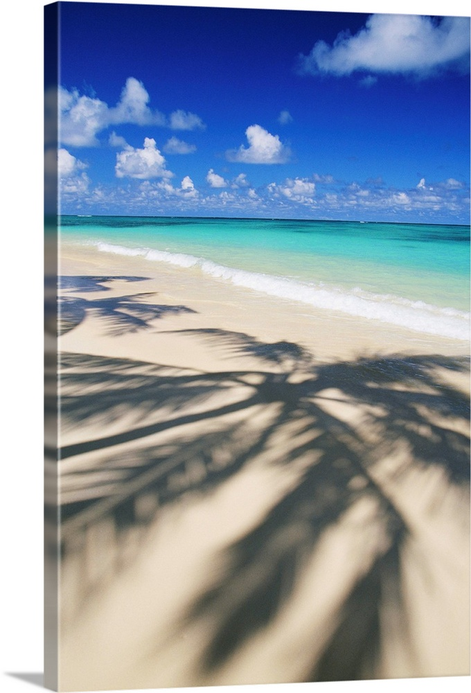 Large Solid-Faced Canvas Print Wall Art Print 20 x 30 entitled Beach Scene With Palm Shadow On Shoreline Sand Solid-Faced Canvas Print entitled Beach Scene With Palm Shadow On Shoreline Sand.  Multiple sizes available.  Primary colors within this image include Dark Blue, Black, Silver, Gray Blue.  Made in USA.  Satisfaction guaranteed.  Inks used are latex-based and designed to last.  Canvas depth is 1.25 and includes a finished backing with pre-installed hanging hardware.  Canvas is handcrafted and made-to-order in the United States using high quality artist-grade canvas.