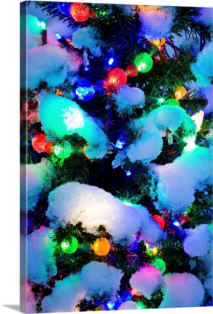 Large Solid-Faced Canvas Print Wall Art Print 20 x 30 entitled Close up of a multi colored Christmas tree lit at dusk outs... Solid-Faced Canvas Print entitled Close up of a multi colored Christmas tree lit at dusk outside in winter.  Christmas tree light detail, twilight, winter.  Multiple sizes available.  Primary colors within this image include Blue, Dark Blue, Black, Royal Blue.  Made in USA.  Satisfaction guaranteed.  Archival-quality UV-resistant inks.  Archival inks prevent fading and preserve as much fine detail as possible with no over-saturation or color shifting.  Canvas is handcrafted and made-to-order in the United States using high quality artist-grade canvas.