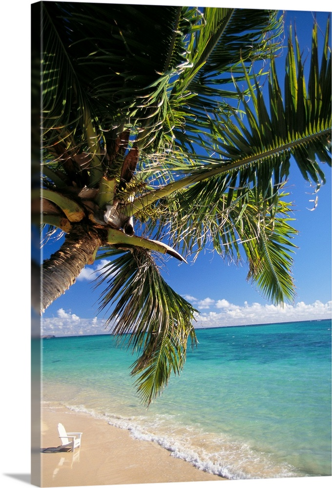 Large Solid-Faced Canvas Print Wall Art Print 20 x 30 entitled Distant View Of White Beach Chair In Shoreline Waters With ... Solid-Faced Canvas Print entitled Distant View Of White Beach Chair In Shoreline Waters With Palm Tree.  Multiple sizes available.  Primary colors within this image include Forest Green, Black, White, Royal Blue.  Made in the USA.  Satisfaction guaranteed.  Archival-quality UV-resistant inks.  Featuring a proprietary design, our canvases produce the tightest corners without any bubbles, ripples, or bumps and will not warp or sag over time.  Archival inks prevent fading and preserve as much fine detail as possible with no over-saturation or color shifting.