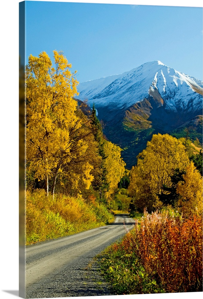 Large Solid-Faced Canvas Print Wall Art Print 20 x 30 entitled Fall colors and snowcapped peaks along the Palmer Creek Roa... Solid-Faced Canvas Print entitled Fall colors and snowcapped peaks along the Palmer Creek Road near Hope.  Fall colors and snowcapped peaks on the Palmer Creek Road near Hope in the Chugach National Forest on the Kenai Peninsula in southcentral Alaska.  Multiple sizes available.  Primary colors within this image include Brown, Dark Yellow, Sky Blue, Dark Navy Blue.  Made in USA.  All products come with a 365 day workmanship guarantee.  Archival-quality UV-resistant inks.  Archival inks prevent fading and preserve as much fine detail as possible with no over-saturation or color shifting.  Canvas is handcrafted and made-to-order in the United States using high quality artist-grade canvas.