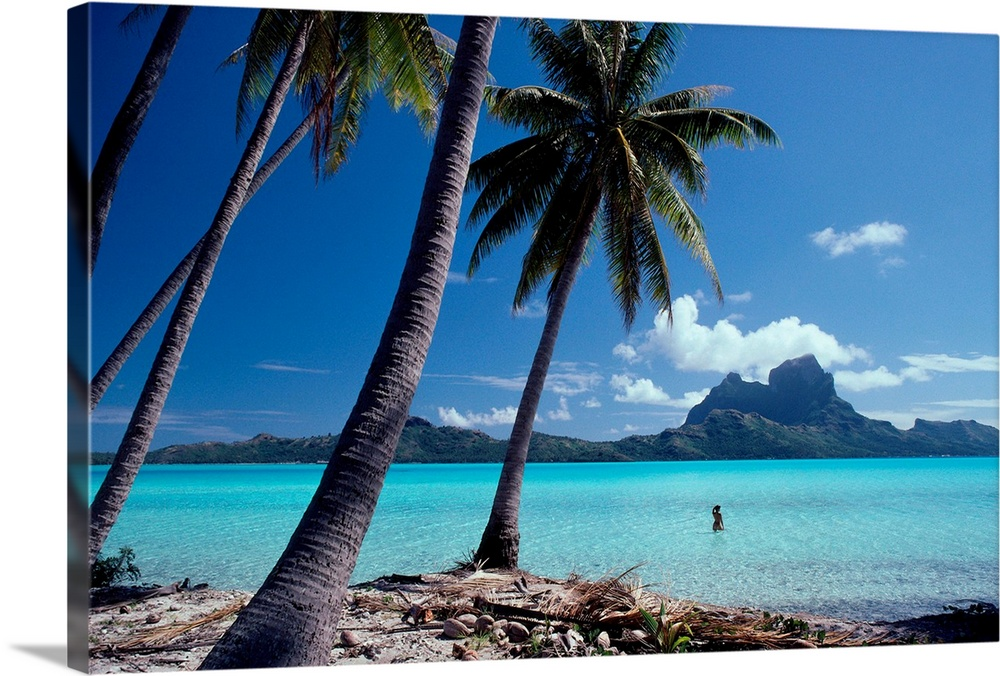 Large Solid-Faced Canvas Print Wall Art Print 30 x 20 entitled French Polynesia, Tahitian Coast Scene, Lovely Woman In Water Solid-Faced Canvas Print entitled French Polynesia, Tahitian Coast Scene, Lovely Woman In Water.  Multiple sizes available.  Primary colors within this image include Black, Silver, Royal Blue, Teal.  Made in the USA.  All products come with a 365 day workmanship guarantee.  Archival-quality UV-resistant inks.  Canvas is handcrafted and made-to-order in the United States using high quality artist-grade canvas.  Archival inks prevent fading and preserve as much fine detail as possible with no over-saturation or color shifting.