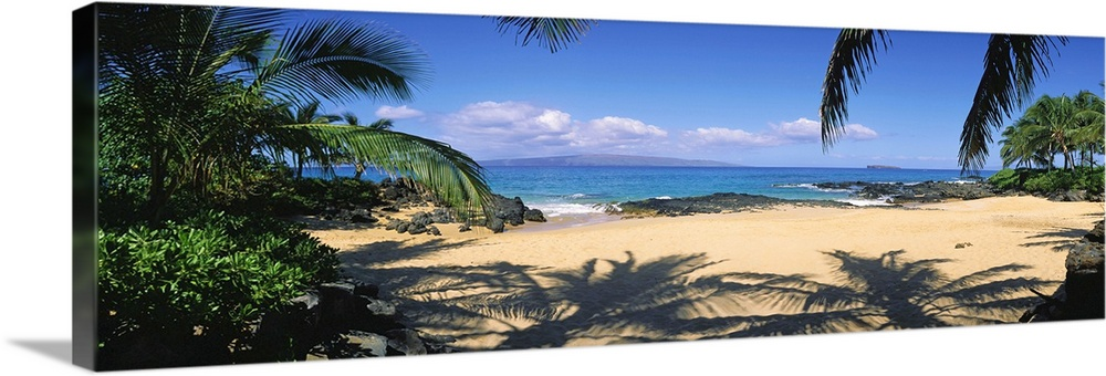 Large Solid-Faced Canvas Print Wall Art Print 48 x 16 entitled Hawaii, Maui, Makena; Small Secluded Beach Palm Shadows On ... Solid-Faced Canvas Print entitled Hawaii, Maui, Makena Small Secluded Beach Palm Shadows On Sand.  Multiple sizes available.  Primary colors within this image include Peach, Sky Blue, Dark Forest Green, Dark Navy Blue.  Made in USA.  Satisfaction guaranteed.  Archival-quality UV-resistant inks.  Canvas is handcrafted and made-to-order in the United States using high quality artist-grade canvas.  Archival inks prevent fading and preserve as much fine detail as possible with no over-saturation or color shifting.