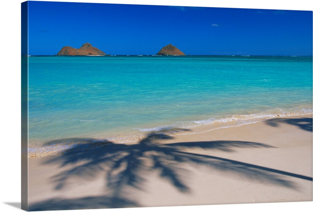 Large Solid-Faced Canvas Print Wall Art Print 30 x 20 entitled Hawaii, Oahu, Lanikai Beach, Palm Shadows On White Sand Solid-Faced Canvas Print entitled Hawaii, Oahu, Lanikai Beach, Palm Shadows On White Sand.  Multiple sizes available.  Primary colors within this image include Black, Silver, Royal Blue, Teal.  Made in USA.  All products come with a 365 day workmanship guarantee.  Archival-quality UV-resistant inks.  Archival inks prevent fading and preserve as much fine detail as possible with no over-saturation or color shifting.  Canvas depth is 1.25 and includes a finished backing with pre-installed hanging hardware.