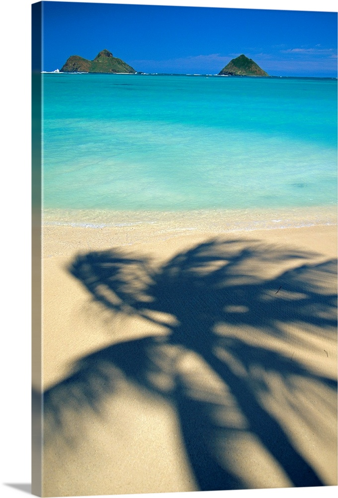 Large Solid-Faced Canvas Print Wall Art Print 20 x 30 entitled Hawaii, Oahu, Lanikai Beach, Shadow Of Palm Tree Near Mokul... Solid-Faced Canvas Print entitled Hawaii, Oahu, Lanikai Beach, Shadow Of Palm Tree Near Mokulua Islands.  Portrait, oversized photograph of the shadow of a swaying palm tree on Lanikai Beach, the Mokulua Islands sit in the distance, over the clear blue waters of Oahu, Hawaii.  Multiple sizes available.  Primary colors within this image include Peach, Royal Blue, Teal, Dark Navy Blue.  Made in USA.  All products come with a 365 day workmanship guarantee.  Inks used are latex-based and designed to last.  Canvas is handcrafted and made-to-order in the United States using high quality artist-grade canvas.  Featuring a proprietary design, our canvases produce the tightest corners without any bubbles, ripples, or bumps and will not warp or sag over time.