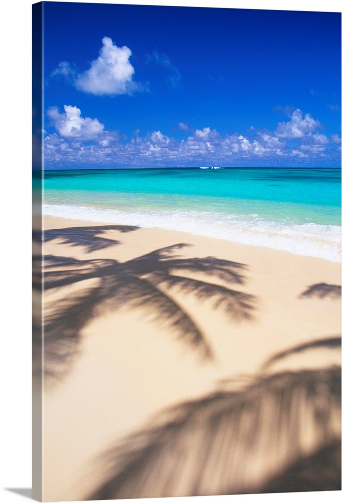 Large Solid-Faced Canvas Print Wall Art Print 20 x 30 entitled Hawaii, Oahu, Lanikai, Tropical Beach Scene With Palm Shado... Solid-Faced Canvas Print entitled Hawaii, Oahu, Lanikai, Tropical Beach Scene With Palm Shadow On Sand.  Multiple sizes available.  Primary colors within this image include Dark Blue, Sky Blue, Silver, Teal.  Made in the USA.  All products come with a 365 day workmanship guarantee.  Inks used are latex-based and designed to last.  Canvas is handcrafted and made-to-order in the United States using high quality artist-grade canvas.  Canvas depth is 1.25 and includes a finished backing with pre-installed hanging hardware.