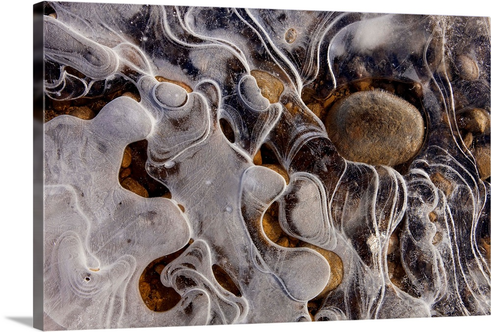 Large Solid-Faced Canvas Print Wall Art Print 30 x 20 entitled Ice forms along the shoreline of a small pond in Alaskas To... Solid-Faced Canvas Print entitled Ice forms along the shoreline of a small pond in Alaskas Tongass Forest.  Multiple sizes available.  Primary colors within this image include Brown, Black, Light Gray.  Made in the USA.  Satisfaction guaranteed.  Archival-quality UV-resistant inks.  Canvas is handcrafted and made-to-order in the United States using high quality artist-grade canvas.  Featuring a proprietary design, our canvases produce the tightest corners without any bubbles, ripples, or bumps and will not warp or sag over time.