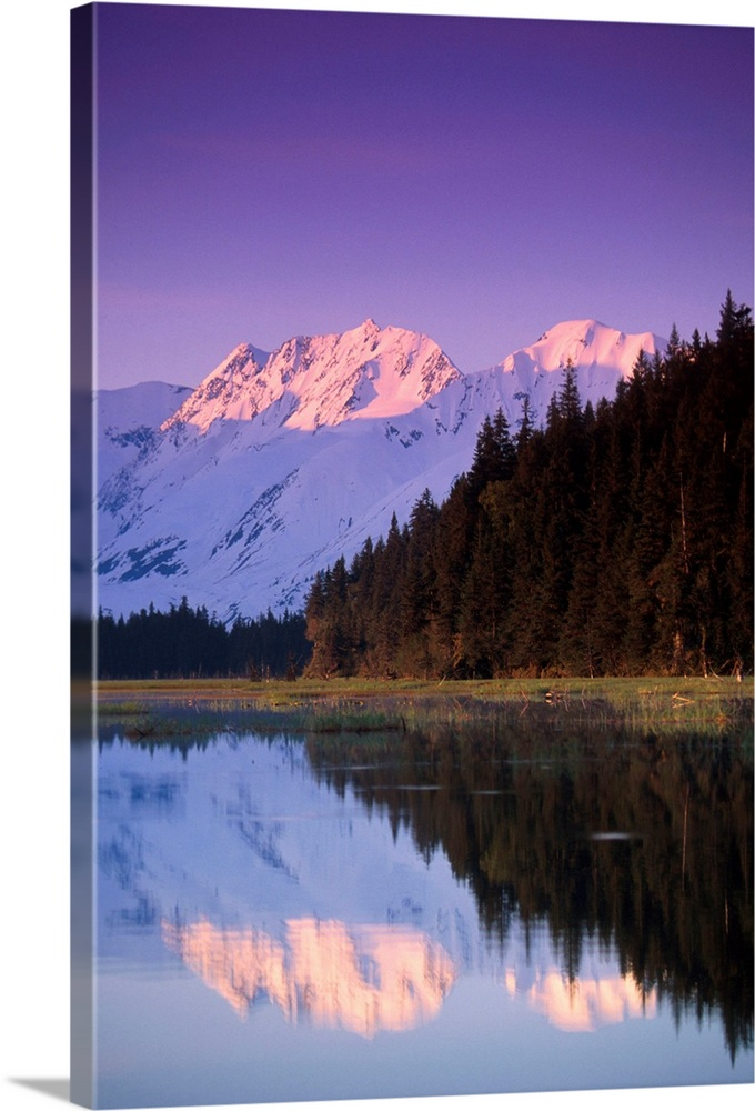 Large Solid-Faced Canvas Print Wall Art Print 20 x 30 entitled Kenai Mtns reflected in lake Southcentral AK summer scenic Solid-Faced Canvas Print entitled Kenai Mtns reflected in lake Southcentral AK summer scenic.  Multiple sizes available.  Primary colors within this image include Dark Purple, Sky Blue, Black, Silver.  Made in USA.  Satisfaction guaranteed.  Inks used are latex-based and designed to last.  Featuring a proprietary design, our canvases produce the tightest corners without any bubbles, ripples, or bumps and will not warp or sag over time.  Canvas depth is 1.25 and includes a finished backing with pre-installed hanging hardware.