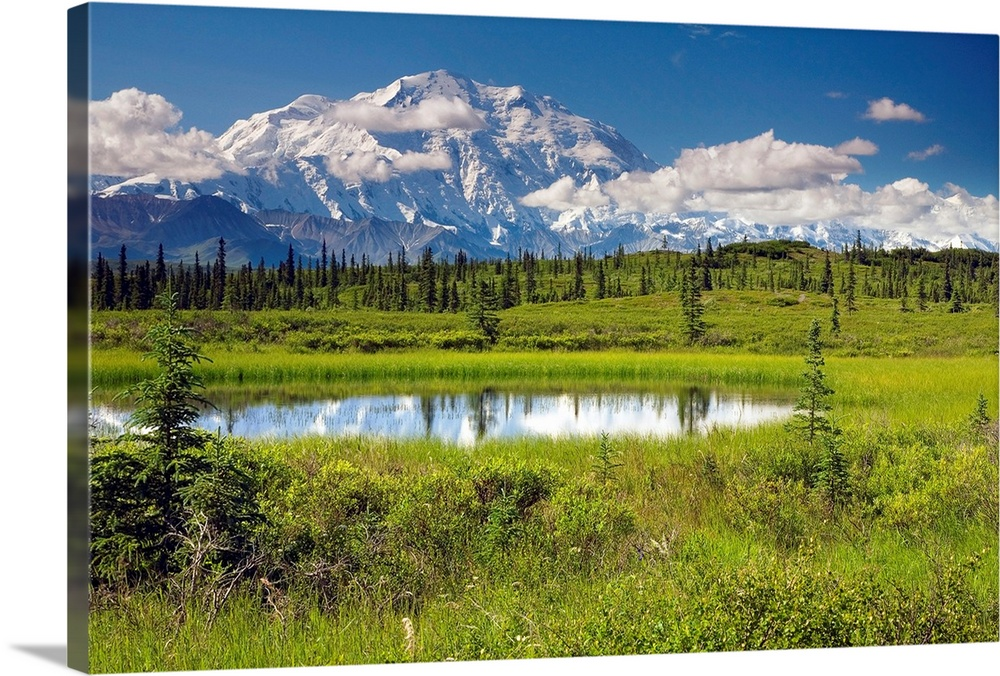 Large Solid-Faced Canvas Print Wall Art Print 30 x 20 entitled Mt.McKinley and the Alaska Range with kettle pond in foregr... Solid-Faced Canvas Print entitled Mt.McKinley and the Alaska Range with kettle pond in foreground, Denali National Park.  A landscape photograph of a mountain reflecting  in a pond in the center of a meadow dotted with trees.  Multiple sizes available.  Primary colors within this image include Dark Yellow, Black, Muted Blue.  Made in the USA.  All products come with a 365 day workmanship guarantee.  Archival-quality UV-resistant inks.  Canvas depth is 1.25 and includes a finished backing with pre-installed hanging hardware.  Canvas is handcrafted and made-to-order in the United States using high quality artist-grade canvas.