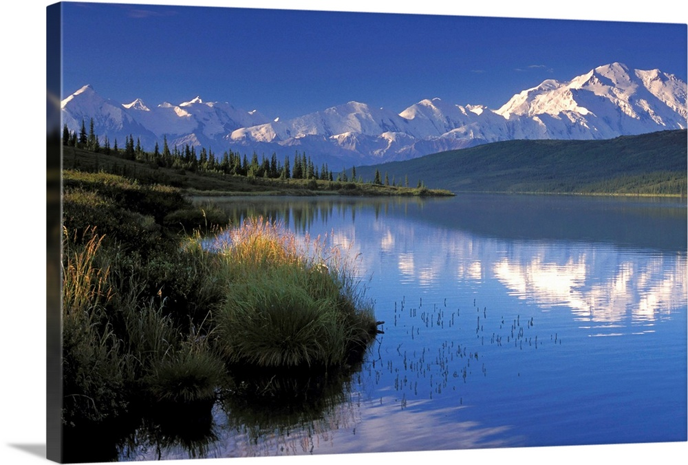 Large Solid-Faced Canvas Print Wall Art Print 30 x 20 entitled Mt McKinley Reflects in Wonder Lake Denali NP AK IN Summer ... Solid-Faced Canvas Print entitled Mt McKinley Reflects in Wonder Lake Denali NP AK IN Summer Alaska Range.  Multiple sizes available.  Primary colors within this image include Black, Gray, White, Muted Blue.  Made in the USA.  Satisfaction guaranteed.  Inks used are latex-based and designed to last.  Featuring a proprietary design, our canvases produce the tightest corners without any bubbles, ripples, or bumps and will not warp or sag over time.  Canvas is handcrafted and made-to-order in the United States using high quality artist-grade canvas.