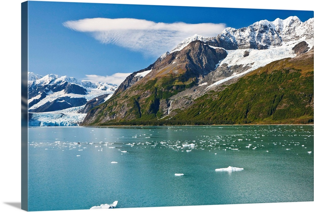 Large Solid-Faced Canvas Print Wall Art Print 30 x 20 entitled Mt. Muir with Baker, Penniman, Serpentine glaciers in Harri... Solid-Faced Canvas Print entitled Mt. Muir with Baker, Penniman, Serpentine glaciers in Harriman, Prince William Sound.  Multiple sizes available.  Primary colors within this image include Light Gray, White, Dark Forest Green, Royal Blue.  Made in USA.  Satisfaction guaranteed.  Inks used are latex-based and designed to last.  Canvas is handcrafted and made-to-order in the United States using high quality artist-grade canvas.  Featuring a proprietary design, our canvases produce the tightest corners without any bubbles, ripples, or bumps and will not warp or sag over time.