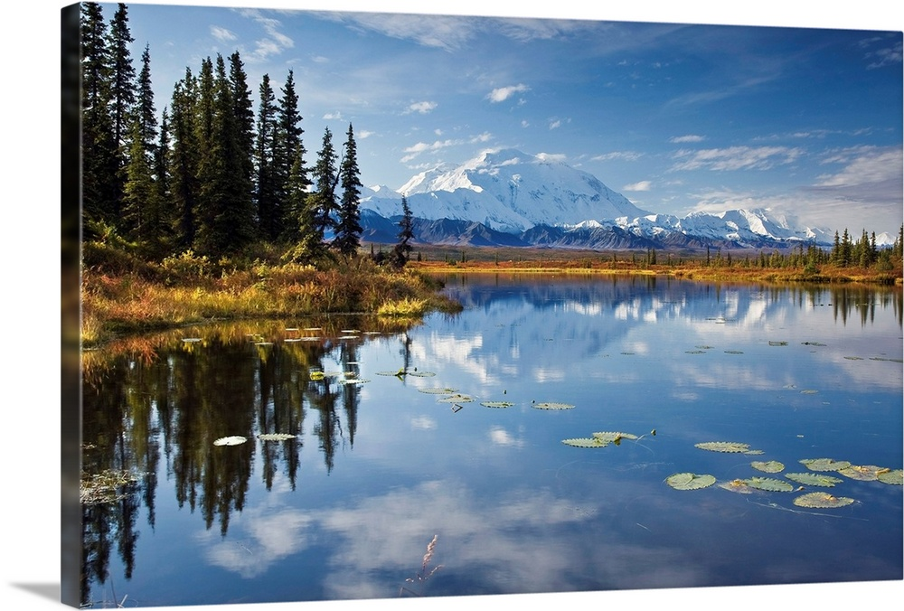 Large Solid-Faced Canvas Print Wall Art Print 30 x 20 entitled North face and peak of Mt. Mckinley reflected in tundra pon... Solid-Faced Canvas Print entitled North face and peak of Mt. Mckinley reflected in tundra pond in Denali National Park.  This is a landscape photograph of the Alaskan sky, trees, and mountains mirrored in still waters.  Multiple sizes available.  Primary colors within this image include Peach, White, Muted Blue, Dark Forest Green.  Made in the USA.  All products come with a 365 day workmanship guarantee.  Archival-quality UV-resistant inks.  Canvas is handcrafted and made-to-order in the United States using high quality artist-grade canvas.  Archival inks prevent fading and preserve as much fine detail as possible with no over-saturation or color shifting.
