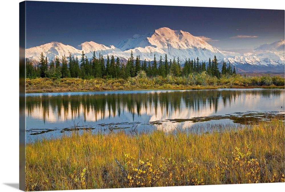 Large Solid-Faced Canvas Print Wall Art Print 30 x 20 entitled North face and peak of Mt. Mckinley reflected in tundra pon... Solid-Faced Canvas Print entitled North face and peak of Mt. Mckinley reflected in tundra pond in Denali National Park.  The north face of Denali is reflected in a small tundra pond in Denali National Park, Alaska. Fall 2008.  Multiple sizes available.  Primary colors within this image include Yellow, Brown, Black, White.  Made in USA.  Satisfaction guaranteed.  Archival-quality UV-resistant inks.  Canvas is handcrafted and made-to-order in the United States using high quality artist-grade canvas.  Featuring a proprietary design, our canvases produce the tightest corners without any bubbles, ripples, or bumps and will not warp or sag over time.