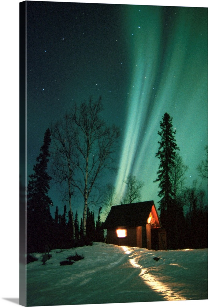 Large Solid-Faced Canvas Print Wall Art Print 20 x 30 entitled Northern Lights over Cabin Scotty Lake Petersville Rd AK Wi... Solid-Faced Canvas Print entitled Northern Lights over Cabin Scotty Lake Petersville Rd AK Winter Snow.  Multiple sizes available.  Primary colors within this image include Orange, Black, White, Dark Forest Green.  Made in the USA.  Satisfaction guaranteed.  Archival-quality UV-resistant inks.  Canvas depth is 1.25 and includes a finished backing with pre-installed hanging hardware.  Featuring a proprietary design, our canvases produce the tightest corners without any bubbles, ripples, or bumps and will not warp or sag over time.