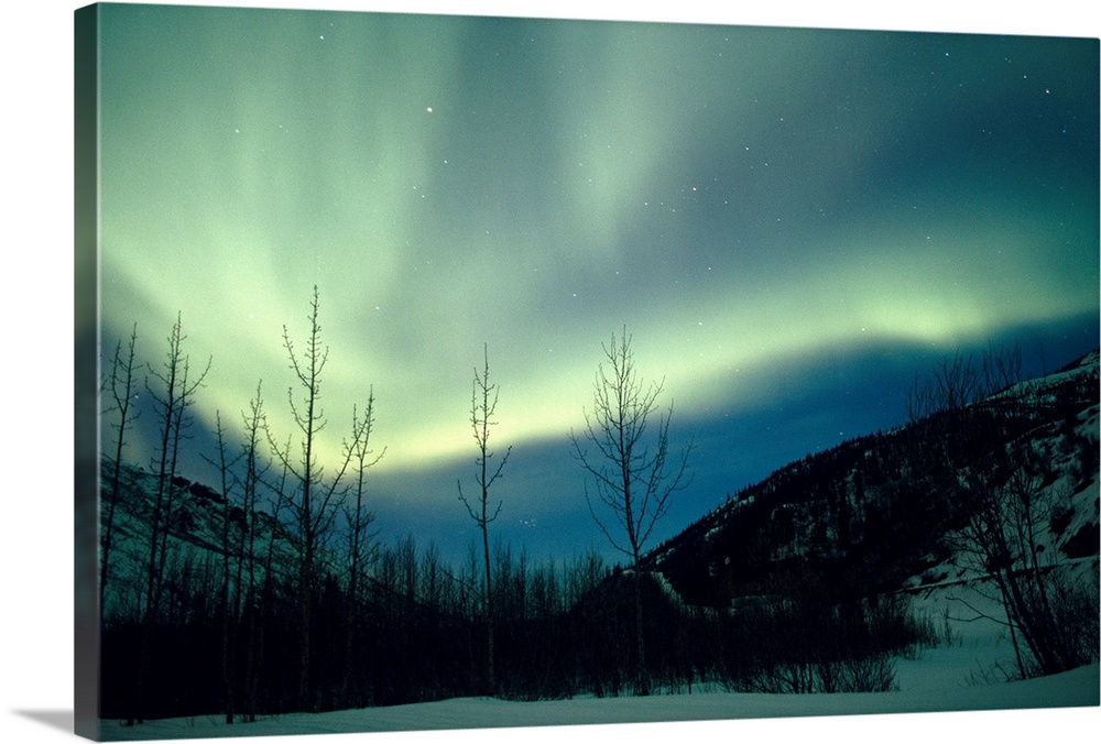 Large Solid-Faced Canvas Print Wall Art Print 30 x 20 entitled Northern Lights Winter Alaska Solid-Faced Canvas Print entitled Northern Lights Winter Alaska.  Multiple sizes available.  Primary colors within this image include Black, White, Gray Blue.  Made in USA.  All products come with a 365 day workmanship guarantee.  Inks used are latex-based and designed to last.  Featuring a proprietary design, our canvases produce the tightest corners without any bubbles, ripples, or bumps and will not warp or sag over time.  Canvas is handcrafted and made-to-order in the United States using high quality artist-grade canvas.