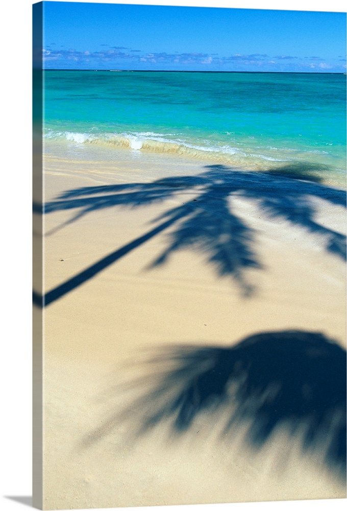 Large Solid-Faced Canvas Print Wall Art Print 20 x 30 entitled Palm Shadows On White Sand Beach, Turquoise Water Solid-Faced Canvas Print entitled Palm Shadows On White Sand Beach, Turquoise Water.  Multiple sizes available.  Primary colors within this image include White, Royal Blue, Teal, Dark Navy Blue.  Made in the USA.  All products come with a 365 day workmanship guarantee.  Archival-quality UV-resistant inks.  Canvas depth is 1.25 and includes a finished backing with pre-installed hanging hardware.  Archival inks prevent fading and preserve as much fine detail as possible with no over-saturation or color shifting.
