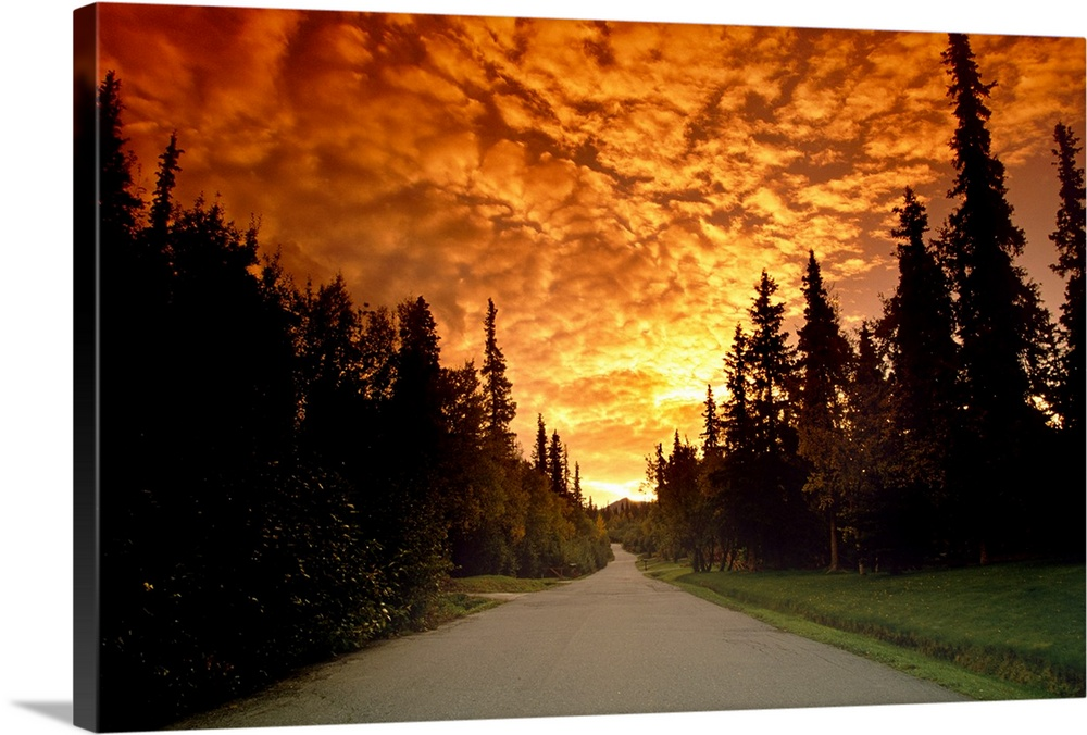Large Solid-Faced Canvas Print Wall Art Print 30 x 20 entitled Road Going into Sunset Rural Anchorage SC AK Summer Solid-Faced Canvas Print entitled Road Going into Sunset Rural Anchorage SC AK Summer.  Multiple sizes available.  Primary colors within this image include Dark Red, Peach, Light Yellow, Black.  Made in USA.  Satisfaction guaranteed.  Inks used are latex-based and designed to last.  Archival inks prevent fading and preserve as much fine detail as possible with no over-saturation or color shifting.  Featuring a proprietary design, our canvases produce the tightest corners without any bubbles, ripples, or bumps and will not warp or sag over time.