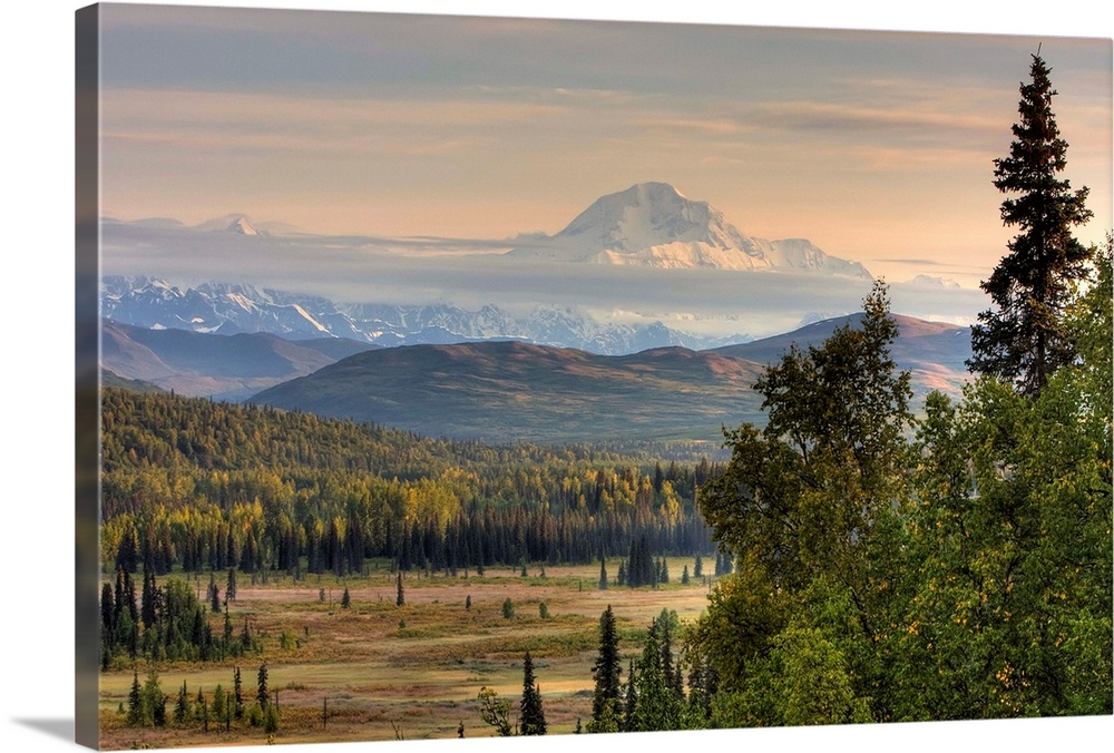 Large Solid-Faced Canvas Print Wall Art Print 30 x 20 entitled Scenic view of Mount McKinley, Alaska Solid-Faced Canvas Print entitled Scenic view of Mount McKinley, Alaska.  Multiple sizes available.  Primary colors within this image include Brown, Peach, Light Gray, Dark Forest Green.  Made in USA.  All products come with a 365 day workmanship guarantee.  Inks used are latex-based and designed to last.  Canvas depth is 1.25 and includes a finished backing with pre-installed hanging hardware.  Featuring a proprietary design, our canvases produce the tightest corners without any bubbles, ripples, or bumps and will not warp or sag over time.