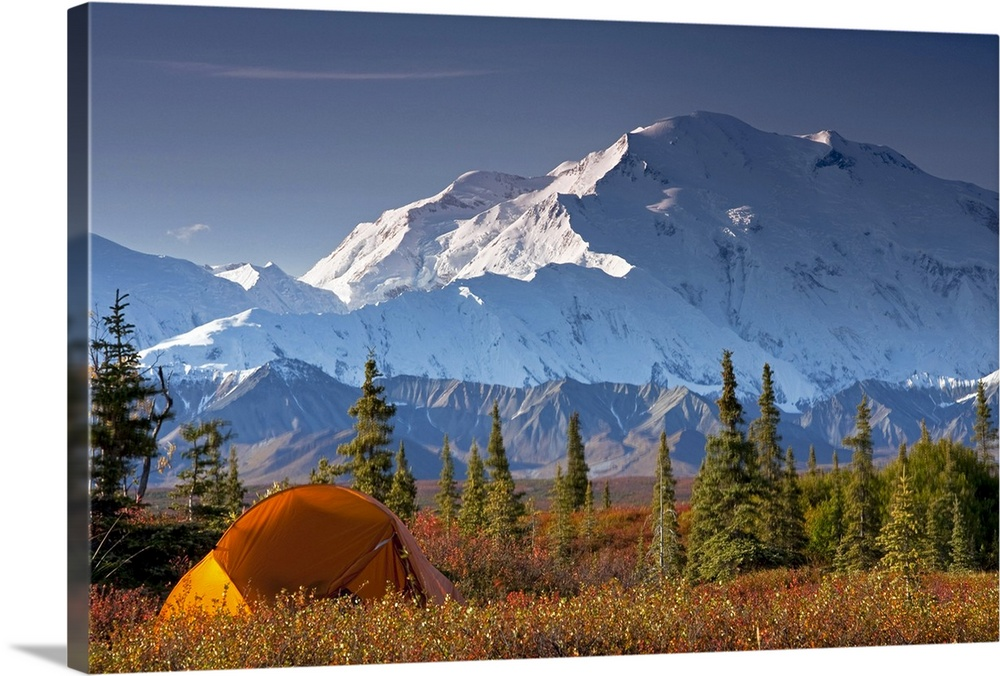 Large Solid-Faced Canvas Print Wall Art Print 30 x 20 entitled Scenic view of Mt. McKinley in the morning with tent in the... Solid-Faced Canvas Print entitled Scenic view of Mt. McKinley in the morning with tent in the foreground.  Oversized landscape photograph of snow covered Mt. McKinley behind a an open filed with some pine trees, a small tent sits in the foreground, in Denali National Park, Interior Alaska.  Multiple sizes available.  Primary colors within this image include Orange, Black, White, Muted Blue.  Made in the USA.  Satisfaction guaranteed.  Archival-quality UV-resistant inks.  Canvas depth is 1.25 and includes a finished backing with pre-installed hanging hardware.  Featuring a proprietary design, our canvases produce the tightest corners without any bubbles, ripples, or bumps and will not warp or sag over time.