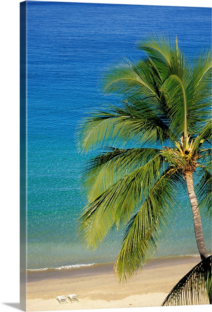 Large Solid-Faced Canvas Print Wall Art Print 20 x 30 entitled Tropical Beach With Palm Tree and Beach Chairs Solid-Faced Canvas Print entitled Tropical Beach With Palm Tree and Beach Chairs.  Multiple sizes available.  Primary colors within this image include Dark Yellow, Peach, Black, Royal Blue.  Made in USA.  Satisfaction guaranteed.  Archival-quality UV-resistant inks.  Archival inks prevent fading and preserve as much fine detail as possible with no over-saturation or color shifting.  Featuring a proprietary design, our canvases produce the tightest corners without any bubbles, ripples, or bumps and will not warp or sag over time.