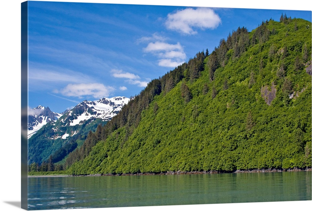 Large Solid-Faced Canvas Print Wall Art Print 30 x 20 entitled View of Port Valdez, Shoup Bay, Prince William Sound, South... Solid-Faced Canvas Print entitled View of Port Valdez, Shoup Bay, Prince William Sound, Southcentral Alaska, Summer.  Multiple sizes available.  Primary colors within this image include Dark Yellow, White, Dark Forest Green, Royal Blue.  Made in the USA.  All products come with a 365 day workmanship guarantee.  Archival-quality UV-resistant inks.  Featuring a proprietary design, our canvases produce the tightest corners without any bubbles, ripples, or bumps and will not warp or sag over time.  Archival inks prevent fading and preserve as much fine detail as possible with no over-saturation or color shifting.